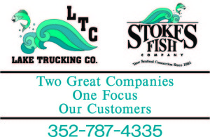 LTC Stokes Logo layout